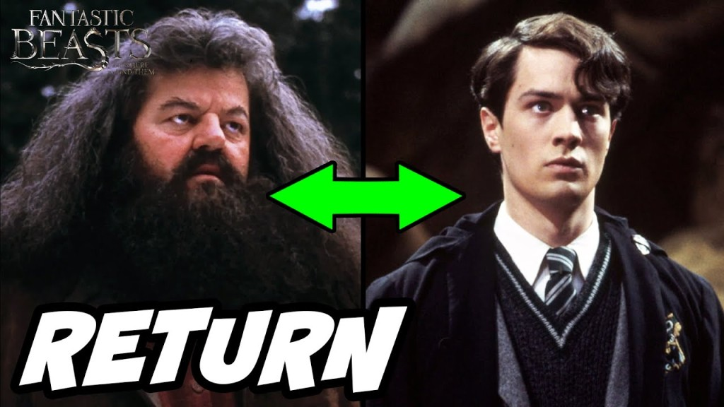 Hagrid e Tom